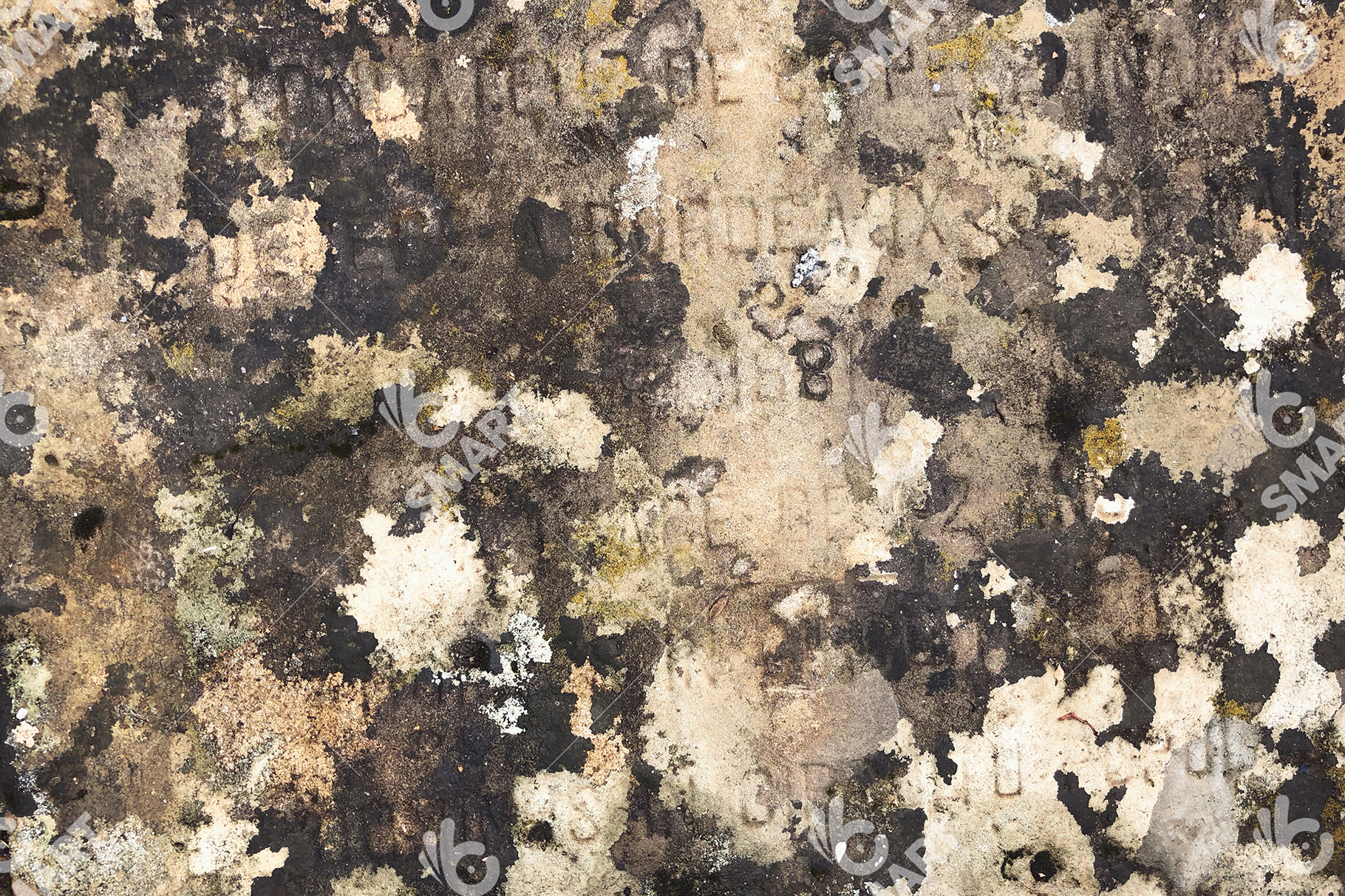 Old Colorful Pavement 1638